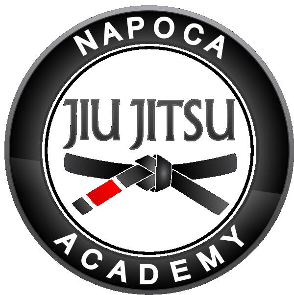 Napoca Jiu Jitsu Academy